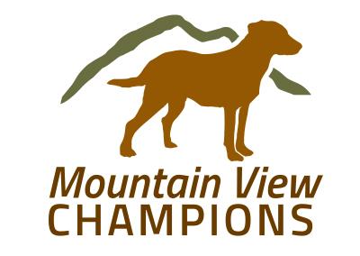 Mountain View Champions